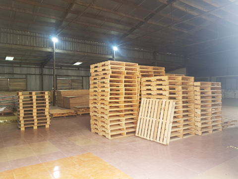Problems with Using Pallets in Distribution Center (DC)